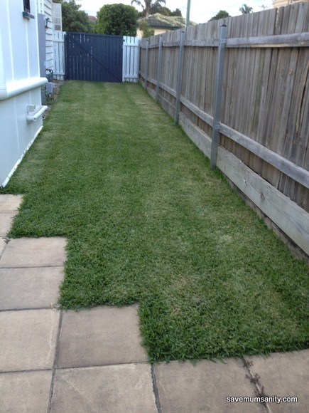 side grass
